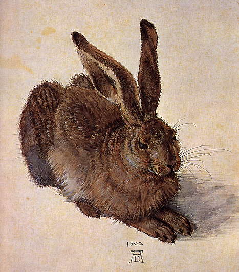 a comparison of albert durer and matthias grunewald poetry styles Albrecht durer was an artist of the early 16th century from nuremburg he was sort of the da vinci of northern europe, always experimenting, deeply interested in combining art and science, and .